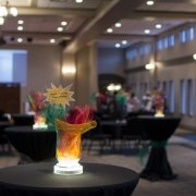 Non-Profit Event Photo - Game Show - by Compass Occasions Event Planners